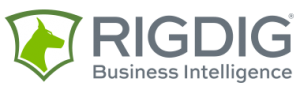 RigDig Business Intelligence